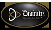 Divinity Boutique